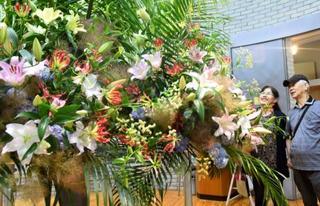 鳥取で「ゆりまつり」開幕