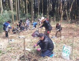 荒廃した森林の再生を目指すNPO法人などの取り組みも森林環境税の事業に含まれる=小城市小城町(佐賀県提供)