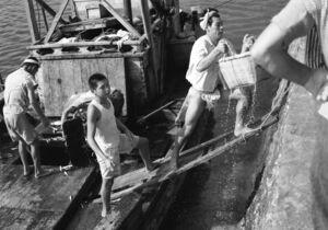 漁船からイワシを水揚げする様子。むしろに広げて天日干しにする=伊万里市の波多津漁港