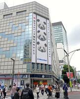 上野動物園でジャイアントパンダの双子の赤ちゃんが誕生したことを記念し、松坂屋上野店に掲げられた巨大な懸垂幕=24日午前、東京都台東区