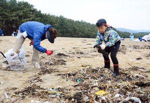 台風で漂着したゴミを拾うボランティア=唐津市の西の浜