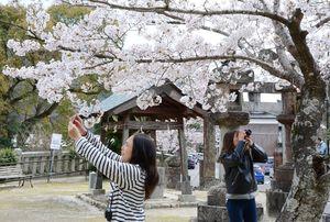 それぞれのアングルで撮影を楽しむ参加者=有田町の八阪神社