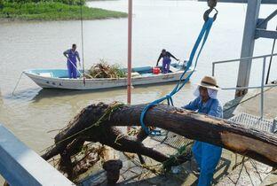 <佐賀大雨>鹿島の漁業者が流木回…