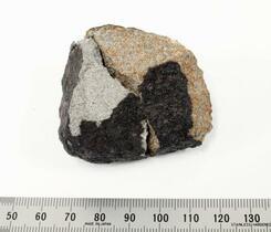 関東の火球、隕石を習志野で発見