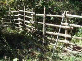 イノシシから庭を守ろうと、敷地内に侵入した竹で作った柵
