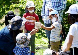 専用の容器に入れたホウネンエビを観察する参加者=佐賀市大和町名尾地区