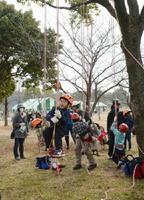 ロープを使った木登り体験で森に親しむ子どもたち=佐賀市の県立森林公園
