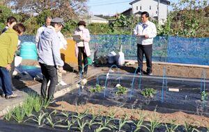 家庭菜園コンクールで菜園の栽培状況や管理具合などを確認する審査員