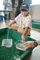 観察するための水槽に魚を移す参加者=佐賀市の川上頭首工