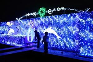 大町町ふれあい広場のイルミネーション。24日にはクリスマスイベントが行われる