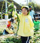 七浦保育園でタマネギ収穫 鹿島市