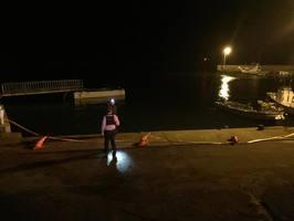 車が転落した現場を捜索する警察官ら=唐津市鎮西町名護屋の米納戸漁港