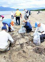 東の浜を清掃するゆめさが大学同窓生ら=唐津市の東の浜海浜公園