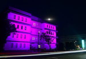 がん征圧の願いを込め、紫色にライトアップされた佐賀メディカルセンタービル=18日午後7時ごろ、佐賀市水ケ江(撮影・山口源貴)