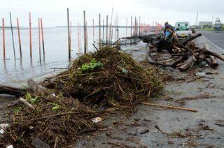 <佐賀2021大雨>有明海沿岸に大量ごみ 漁協など回収作業に追われる