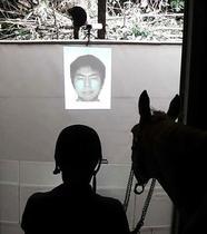 馬は人の心読み取れる、北大発表