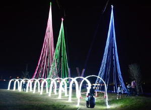 クレーンを使って設置された3本のクリスマスツリー=唐津市鏡の松浦川運動広場
