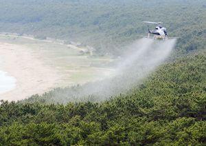 虹の松原上空から薬剤をまくヘリコプター=ホテル&リゾーツ佐賀唐津の屋上から
