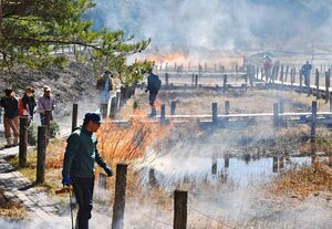 枯れ草に火が放たれ、勢いよく燃える樫原湿原の「野焼き」=唐津市七山