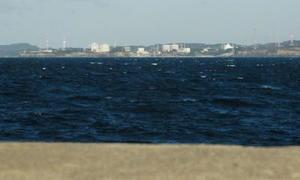 海を隔てた目の前に九州電力玄海原子力発電所がある=唐津市の向島