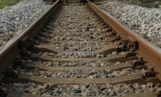 犬はねられ、列車に遅れ 11日、JR佐世保線