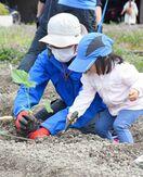 佐賀のニュース 夏野菜栽培を親子で体験!