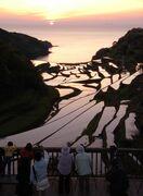 浜野浦の棚田、保全に協力を 県が企業ボランティア募集