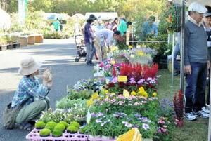 花や庭木、盆栽などが数多く並ぶ秋の花とみどりの市=昨年10月、吉野ケ里歴史公園臨時駐車場