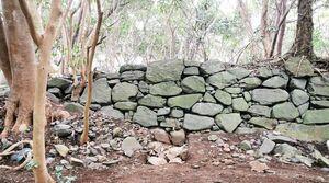 発掘調査が進む島津義弘陣跡主郭部の南面石垣