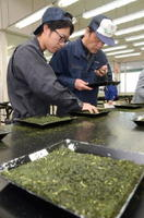 出品された茶の外観や香りを確かめていく商社員=嬉野市の西九州茶農業協同組合連合会