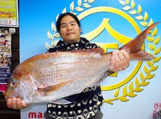 谷口さん、平戸・古江港で77センチのマダイ