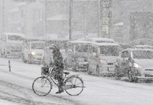 雪で白く染まった佐賀市内=10日午前9時6分、佐賀市の神野東一丁目交差点