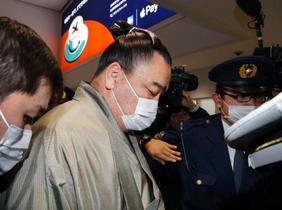 鶴竜と照ノ富士を聴取、鳥取県警
