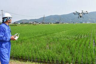 「ウンカ」予防にドローン 農薬散布を効率化