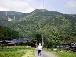山浦新町の登城道。この両脇に市が立つ町屋が並んでいた
