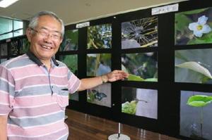 佐賀城周辺に生息する昆虫や植物などの写真を紹介している=佐賀市大和町のさが水ものがたり館