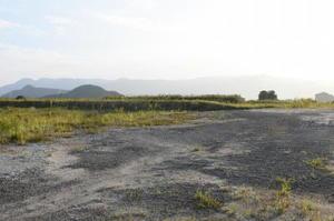 日本新電力がバイオマス発電施設の建設を予定していた七ツ島工業団地の用地=伊万里市
