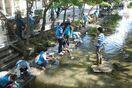松原川に住む生物を観察、カヤック体験も トヨタソーシャル…