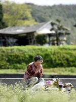 熊本県南阿蘇村の東海大生が犠牲となったアパート跡地で手を合わせる近所の女性=16日午前