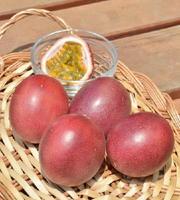 甘酸っぱい果肉が詰まったパッションフルーツ=三養基郡みやき町の「NAKAYAMA FARM」