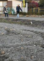 佐賀県内は1日、今季一番の冷え込みを記録し、収穫を終えた大豆畑はうっすらと霜に覆われた=午前7時ごろ、佐賀市久保田町