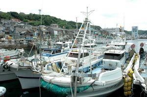 イカ釣りが一斉休漁で呼子港につながれたままの漁船=2008年6月18日、唐津市呼子町
