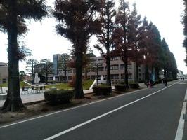 佐賀大学構内