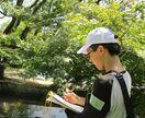公園の樹木観察して 佐賀市、自由研究の作品募集