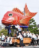 台車が新調された「鯛」を試し曳きする曳き子たち=唐津神社の参道