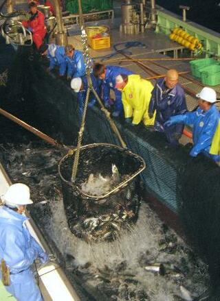 漁業者の減収補填の基金がピンチ
