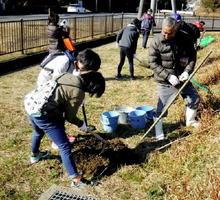 ソメイヨシノの苗木を植樹する団員=伊万里市山代町の伊万里湾大橋球技場