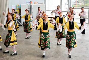 軽やかなステップを披露したカザンラック民族舞踊団=有田町役場