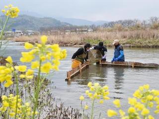 自然・命編 第8回 シロウオ漁 (唐津市玉島川)