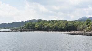 JBGエナジーが計画している液化天然ガスの火力発電所建設予定地=伊万里市山代町立岩